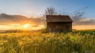 Les diagnostics immobiliers sur une dépendance